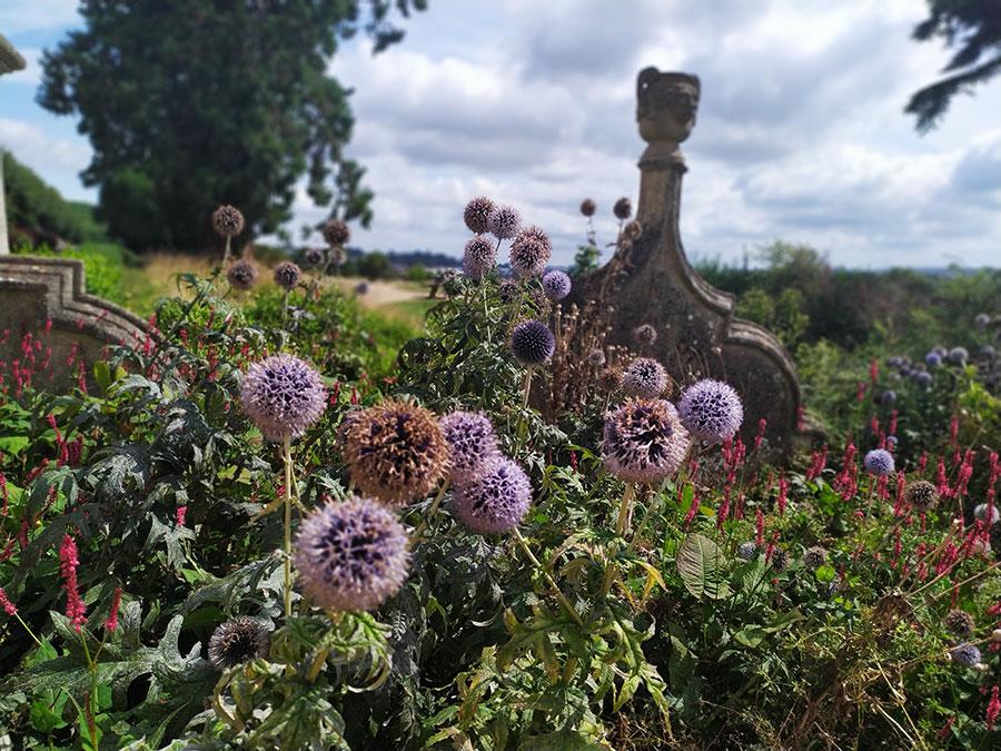 cementerio-ashton-court