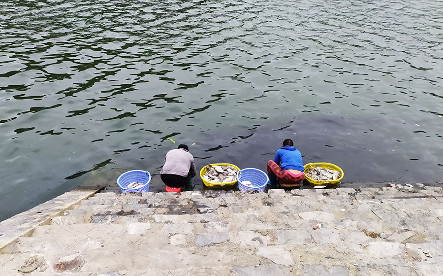 que-ver-en-vietnam-pescadores