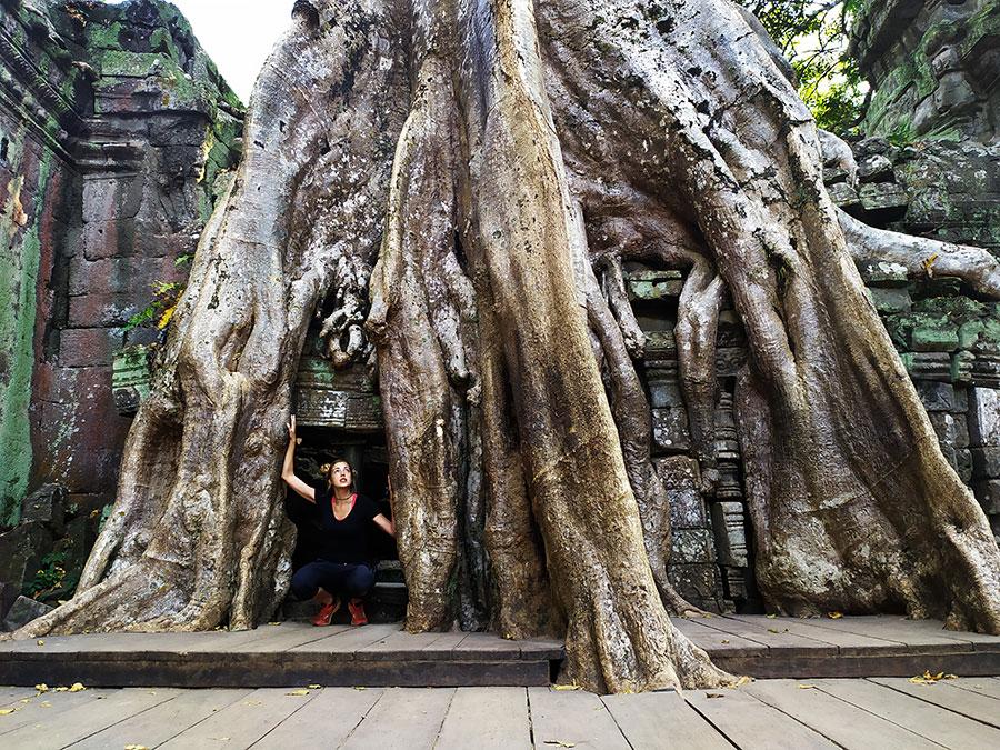 ta prohn templo angkor bicicleta