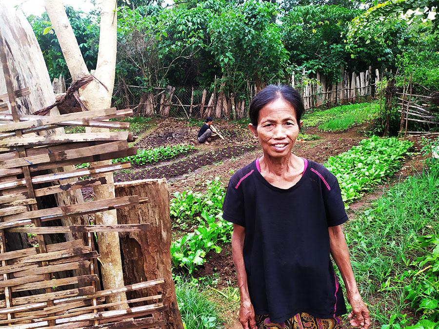 mujer-laos-plantaciones