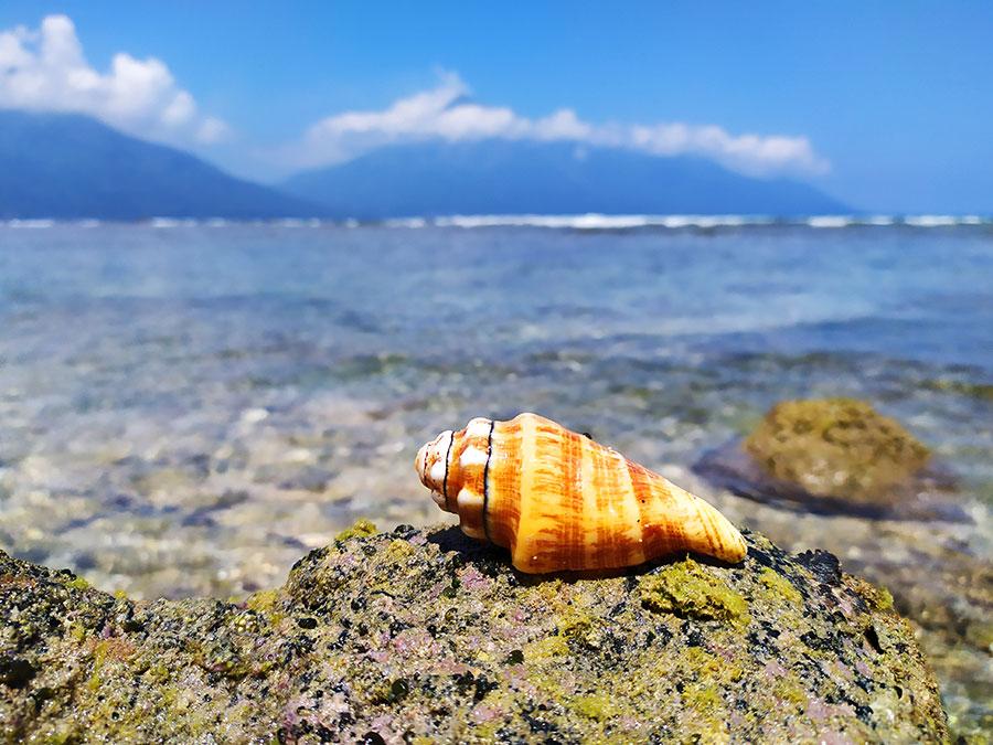 el-mejor-snorkel-de-indonesia-en-pulau-siau