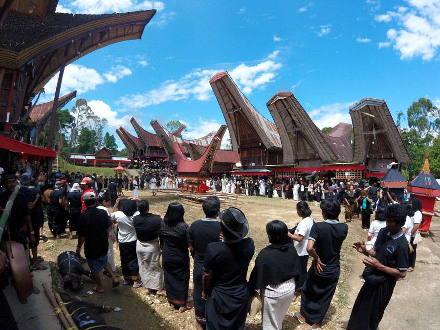 funeral-indonesia-tana-toraja